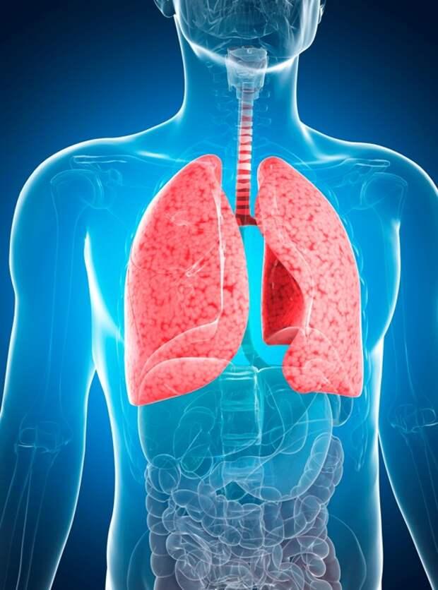 7 признаков начинающейся пневмонии, о которых стоит знать каждому