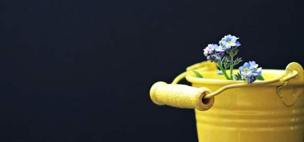 Убираем запах мусорного ведра: простой способ
