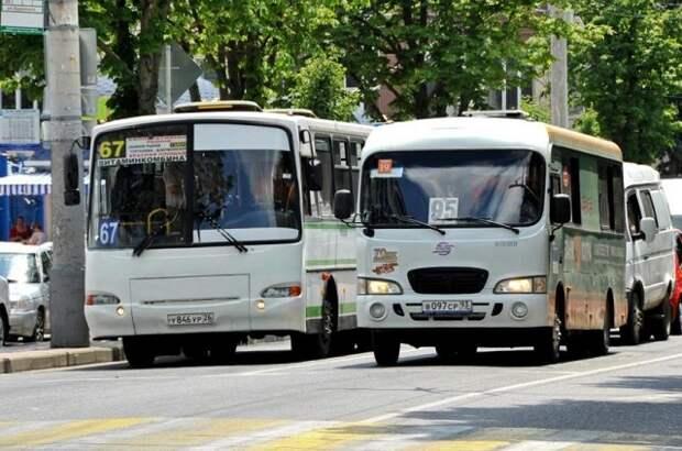 В Краснодаре движение маршруток можно будет отследить по QR-кодам на остановках