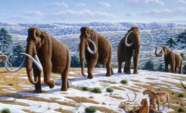 Стартап по воссозданию мамонтов, туалет для коров и эпидемии из-за потепления