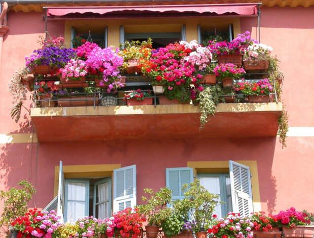 Наружное озеленение балкона позволит скрыть грубые металлические конструкции.