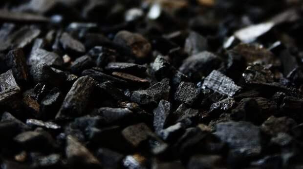 Завскладом в Крыму распродал принадлежащий Минобороны уголь