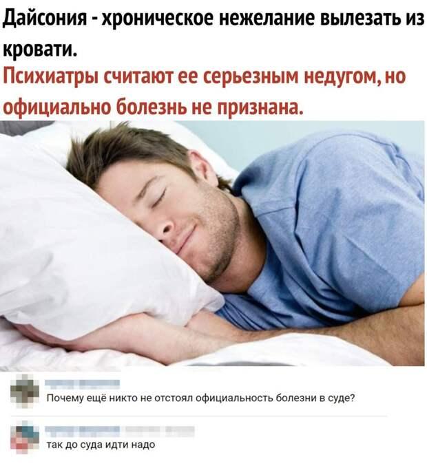 Обидно, когда кот целыми днями жрет, спит, ничего не делает, а жена его любит...