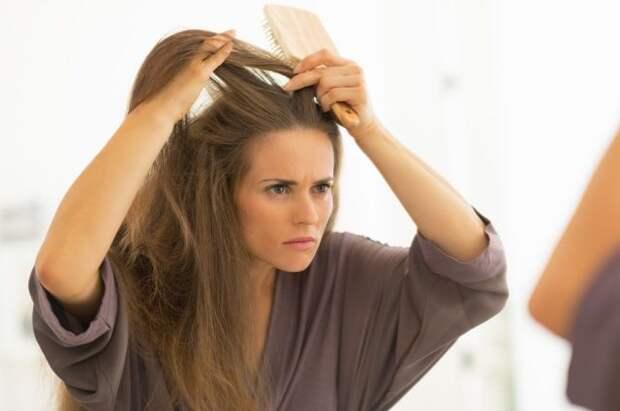 О каких заболеваниях можно узнать по волосам