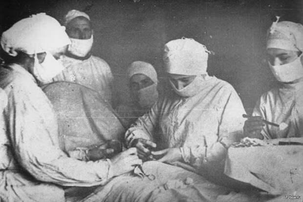 Тайна смерти советского учёного, который создал «голубую кровь»