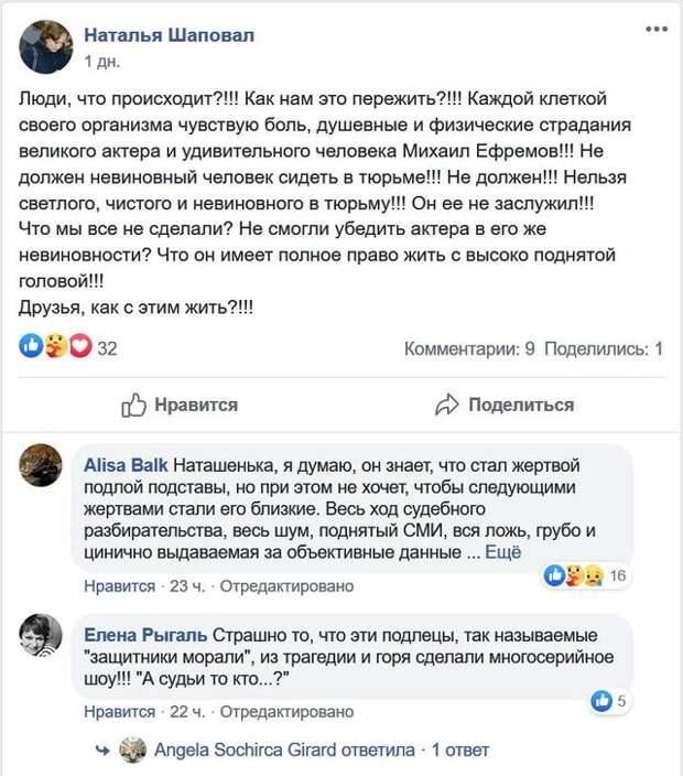 Нибиру атакует — о добровольных защитниках Михаила Ефремова