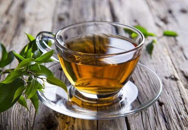 жиросжигающие продукты: зеленый чай