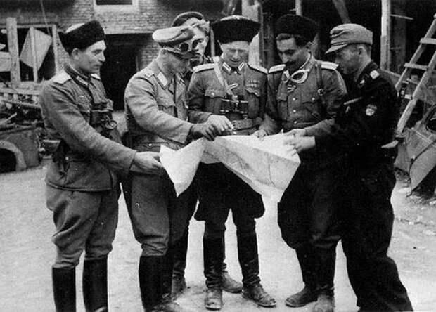 Сколько казаков воевало в рядах СС