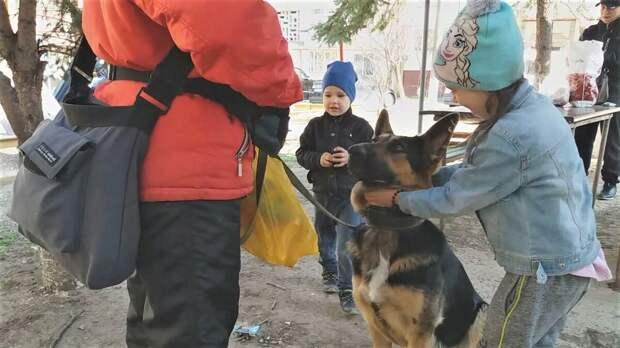 Сейчас дети собаку не кормили, поэтому она смотрела на меня. Впервые сфотографировали картину, раньше только дома вспоминали.