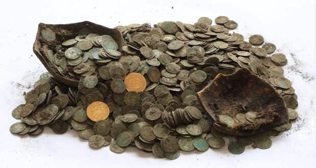 В словацкой деревне дикие кабаны откопали сокровища XVI века