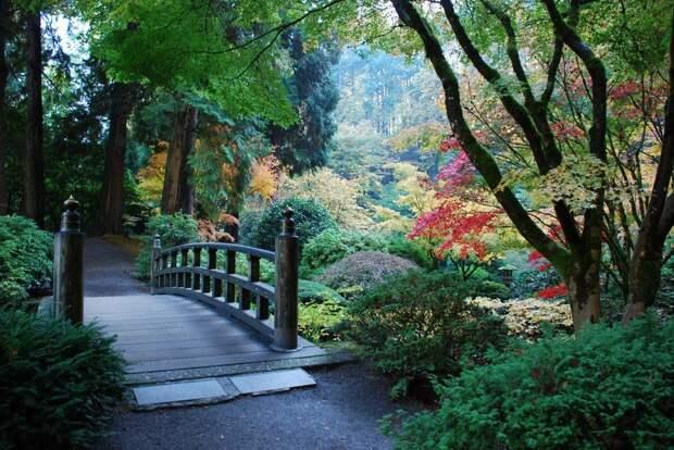 Чудесный Японский сад