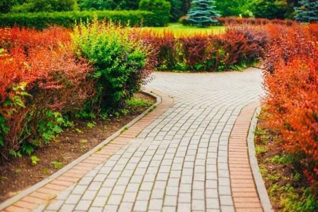 садовая дорожка, брусчатка