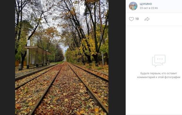 Фото дня: трамвайные пути в золоте листьев