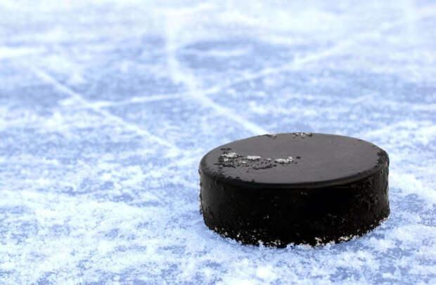 В Конаковском районе ребят, которые хотят заниматься хоккеем и фигурным катанием, ждут в спортшколе
