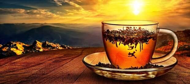 Чай. Что нужно знать и как выбирать?