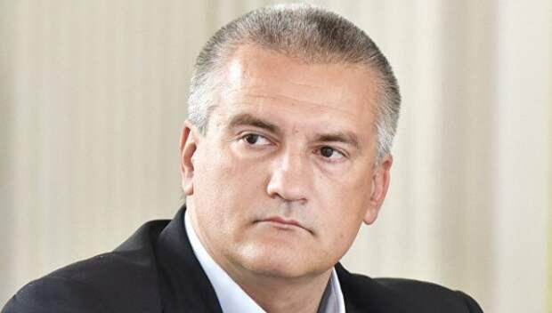 Сергей Аксенов рассказал об экологической ситуации на севере Крыма