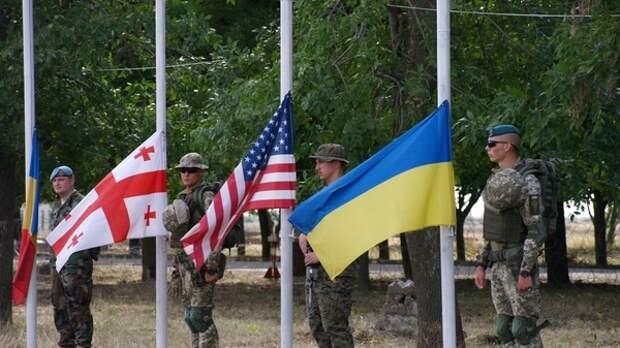 Обман Запада с принятием Киева в НАТО вызвал истерику у Зеленского