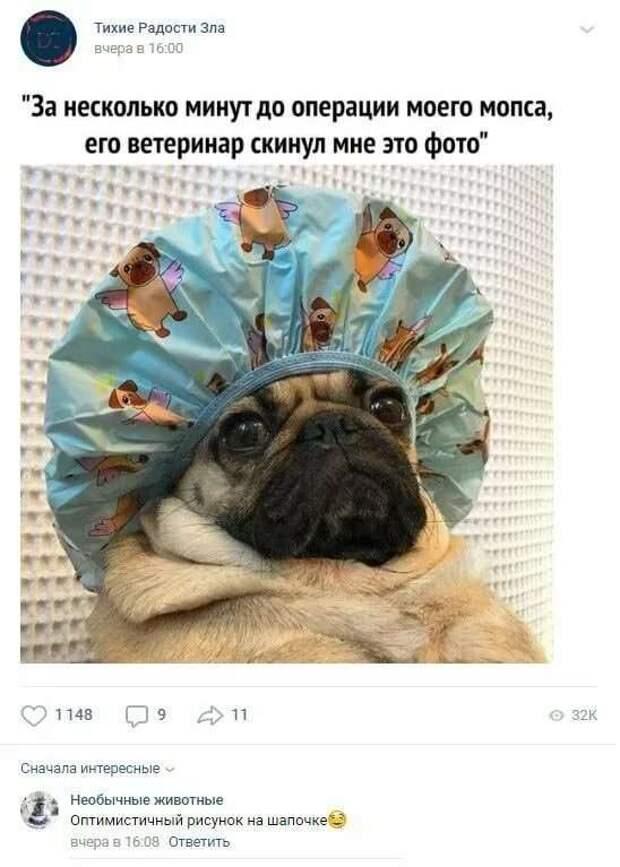 Смешные комментарии. Подборка chert-poberi-kom-chert-poberi-kom-57570217102020-3 картинка chert-poberi-kom-57570217102020-3