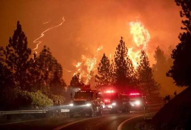 Апокалипсис в США: лесные пожары унесли жизни 28 человек