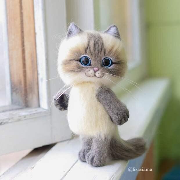 Милые котята из войлока от рукодельницы Елизаветы Делекторской