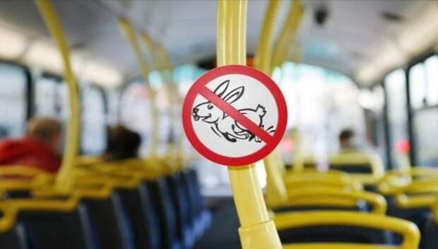 В крымских автобусах посчитали «зайцев»