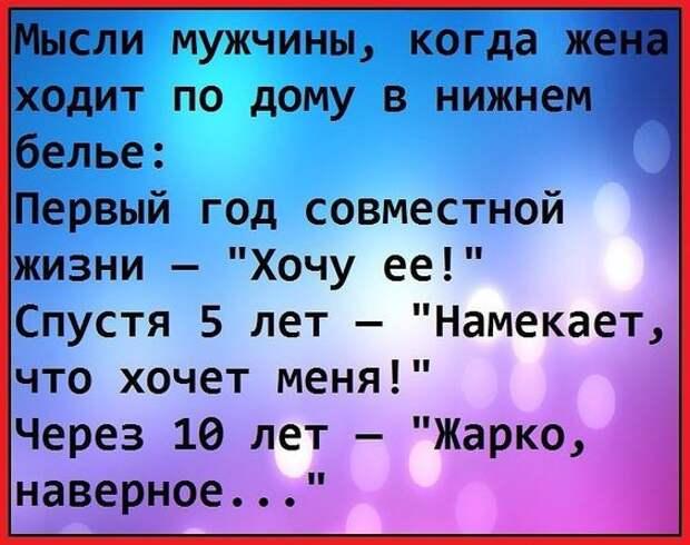 Василий был настолько интеллигентным, что, когда его посылали на три буквы, он вежливо отвечал:  — Извините, но мне с Вами не по пути.