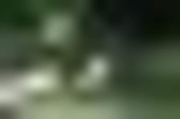 Домашняя ферма червей, рефиллинг и отказ от смены постельного белья:  Казанова, Анохина, Ивакова учат жить проще, чище и лучше