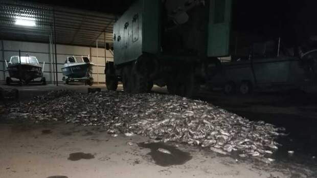 ВРостовской области задержали браконьера на ЗИЛе, набитом рыбой
