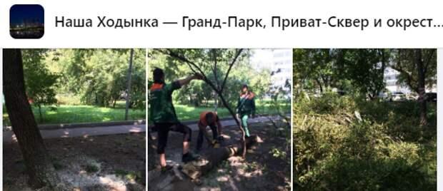 По просьбе анонимного жителя на Хорошевском  шоссе срубили деревья