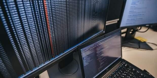 Зяббарова: Поступления в бюджет Москвы от IT-отрасли в январе-феврале выросли на 11,2%. Фото: Е. Самарин mos.ru