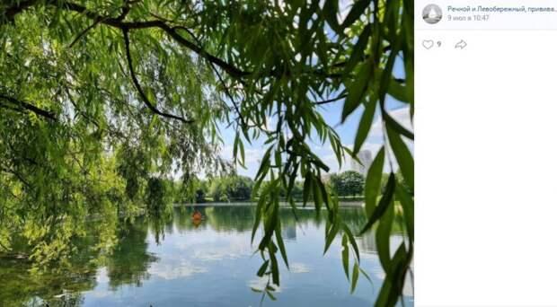 Пруды в парке Дружбы очищают два раза в неделю — Мосводосток