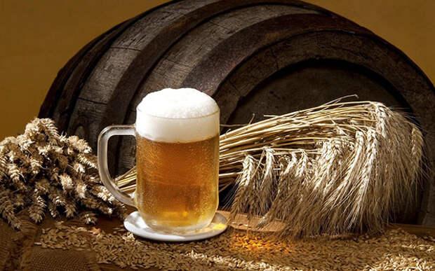 Пиво превратило человечество из кочевников оседлых земледельцев