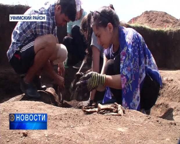 Археологи нашли селище времён Золотой Орды