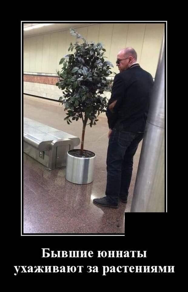 Демотиватор про растения