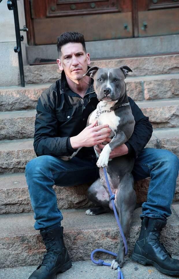 Всем его фанатам хорошо известно, что Джон любит животных и является активистом по их защите. Кроме того, отец актера - председатель Общества защиты животных США. актер, животные, защита животных, звезды, знаменитости, питбули, собаки, фото