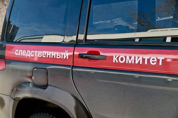 В Красноярске нашли останки девочки, которую мать оставила подруге