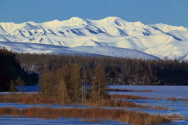 Зимой Момские горы кажутся безжизненными, но это не совсем так. Дикие животные давно приспособились к этим условиям. Да и редкие оленеводческие бригады ещё можно встретить, хотя их всё меньше. Здесь вид от Большой Момской наледи.