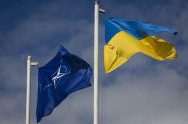 Украина напрашивается в НАТО и ЕС