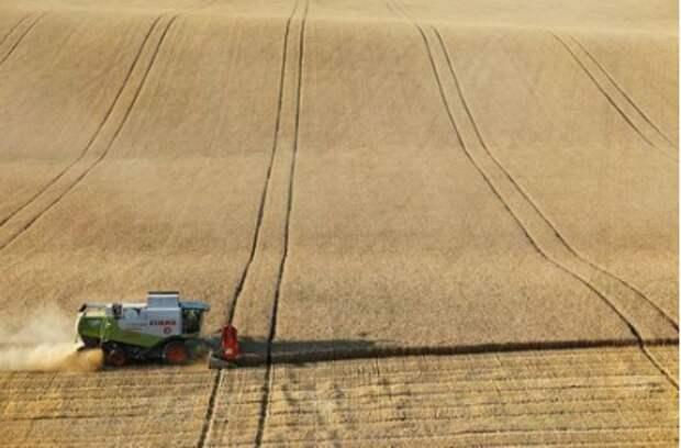 A combine harvests wheat in a field near the village of Suvorovskaya in Stavropol Region, Russia July 17, 2021. Picture taken July 17, 2021. REUTERS/Eduard Korniyenko