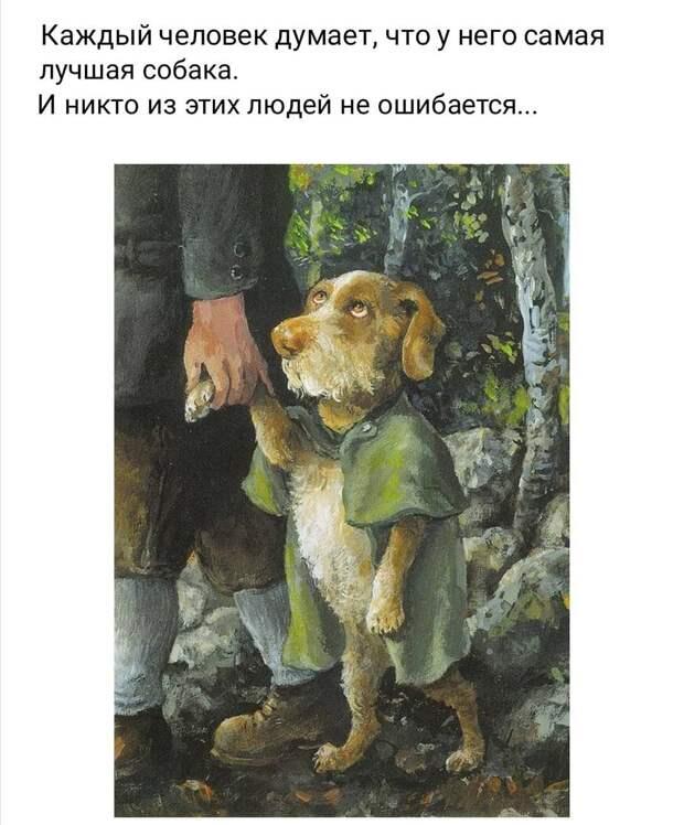 - Смотрю на людей и меня не покидает ощущение, что профессор Преображенский жив и активно продолжает оперировать собак...