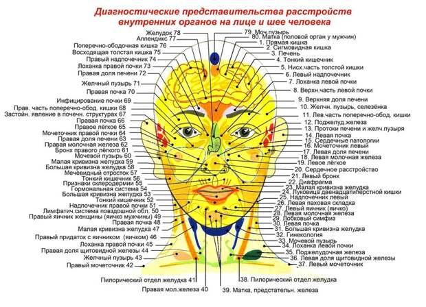 Массаж шиацу: Биологически активные точки на голове и лице