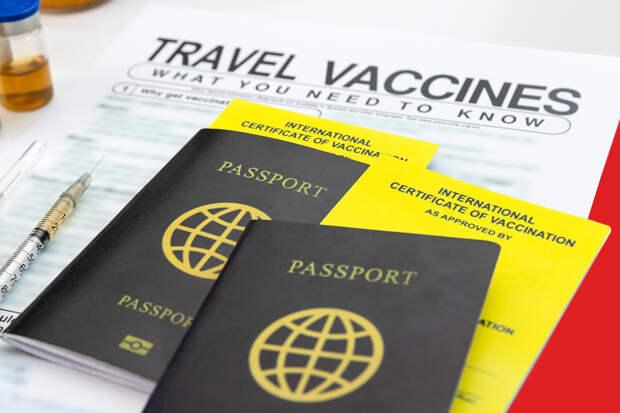 Страны G20 готовятся вести паспорта вакцинации для туристов
