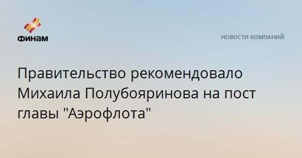 """Правительство рекомендовало Михаила Полубояринова на пост главы """"Аэрофлота"""""""