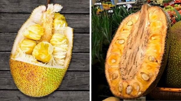 Джекфрут еда, фрукты, экзотика