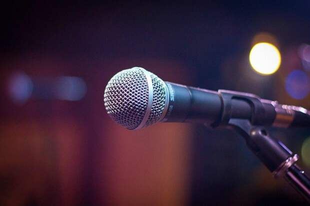 Микрофон / pixabay.com