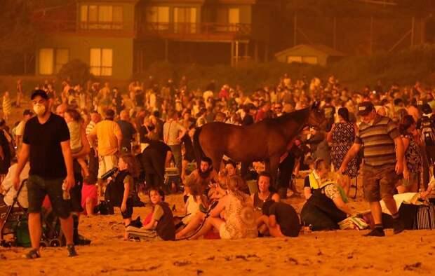 16 шокирующих фотографий о том, что происходит в Австралии