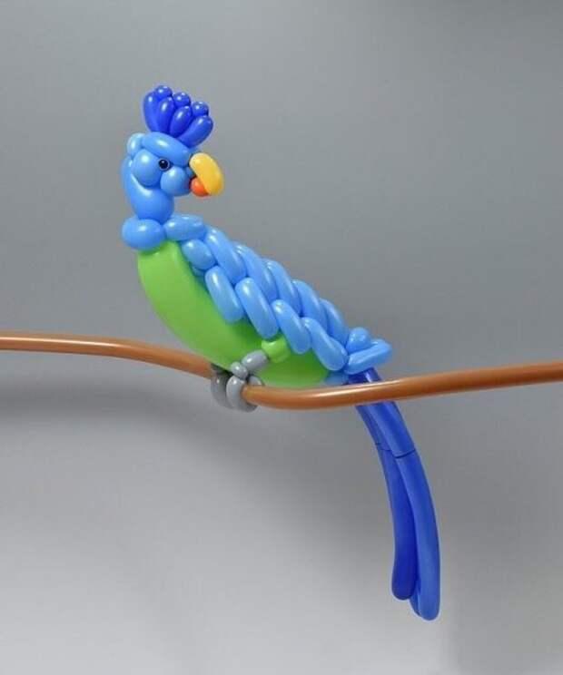 Замысловатые и потрясающие скульптуры животных из воздушных шаров