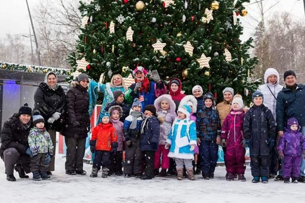 Пользователи портала «Активный гражданин» выберут новогоднюю программу в Лианозовском парке