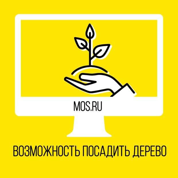 Жители Москвы могут подать электронную заявку, чтобы посадить дерево