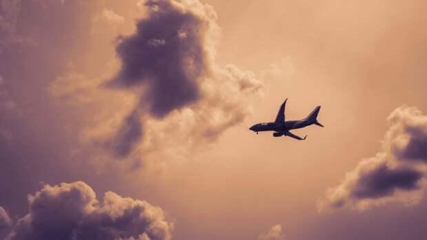 Названы сроки запуска чартерных рейсов из России в Египет